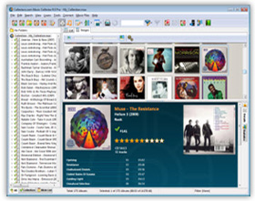 The Music Collector CD Cataloging / Music File Database Software in Images View. Click for more screenshots.